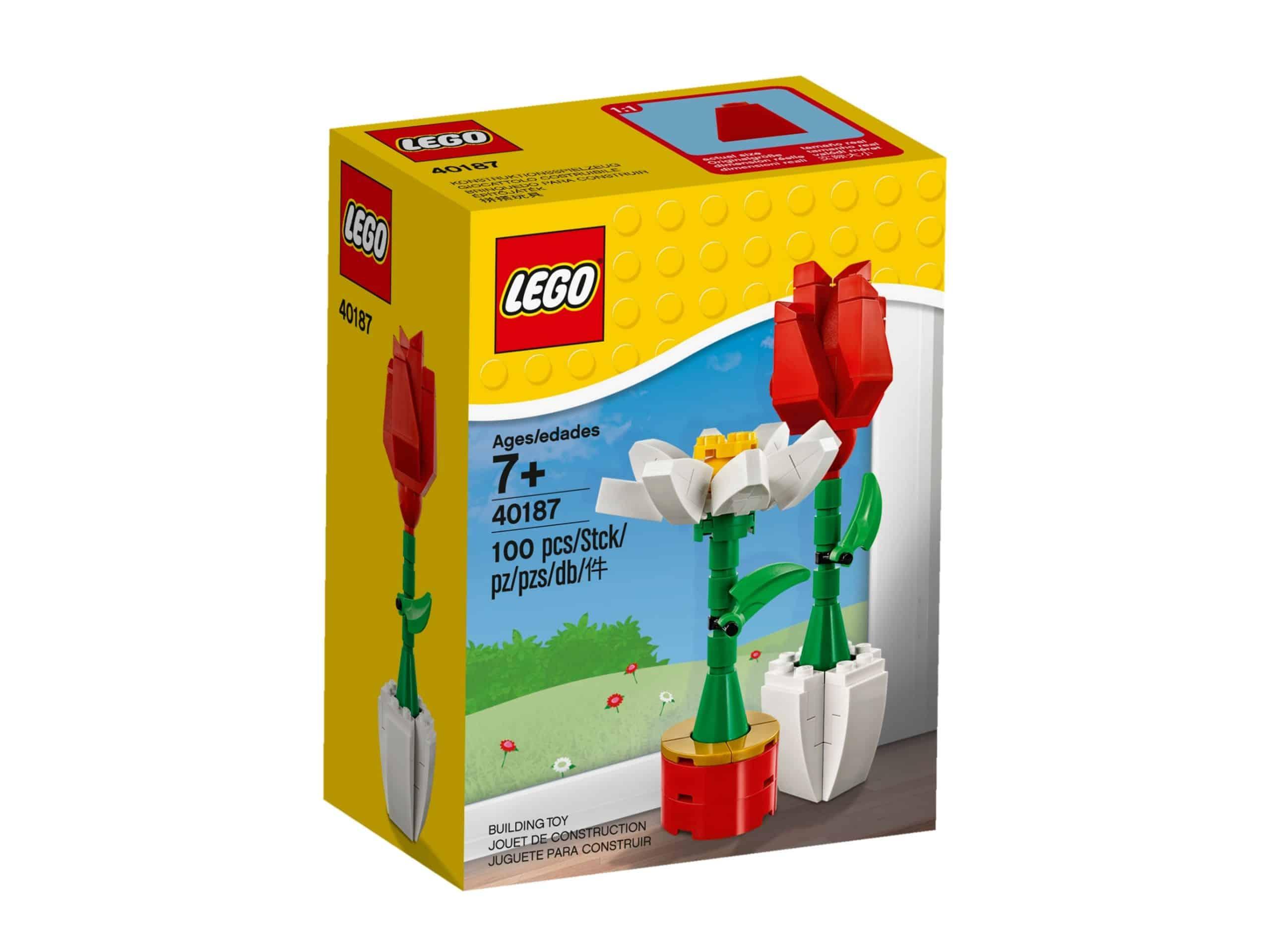 lego 40187 blumenpracht scaled